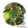 selva_spring-AUgmented-01.png