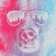 mr_bear