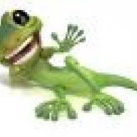 spottedgecko